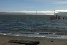 View of the Golden Gate Bridge from Reynolds Beach, Angel Island