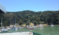 Angel Island Tiburon Ferry