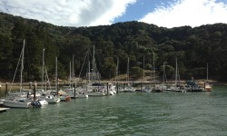 Paradise is just a quick 10-minute ferry ride from Tiburon, California aboard Angel Island - Tiburon Ferry.