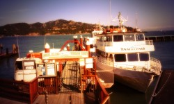 Angel Island - Tiburon Ferry wishes you a wonderful Holiday Season!