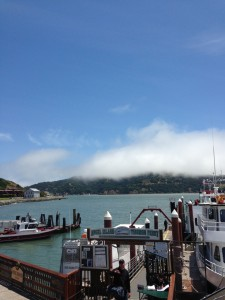 Angel Island Tiburon Ferry's Captain Maggie invites you to get onboard for fun and adventure on San Francisco Bay.