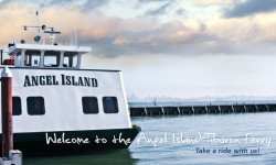 Angel Island - Tiburon Ferry is committed to the safety and wellbeing of our community and commuters.
