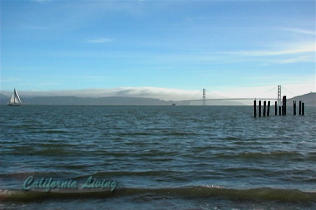 View of Golden Gate Bridge from Angel Island State Park