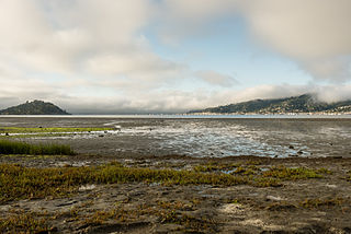 Richardson Bay marsh as seen from Blackie's Pasture, Tiburon by Frank Schulenburg