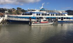 Safety concerns among other issues at core of delays for Golden Gate Bridge, Highway and Transportation District Tiburon ferry commuter service.