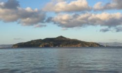 Angel Island Ferry - Angel Island