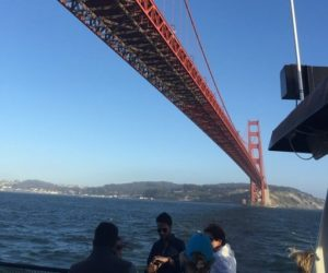 Ride under the Golden Gate Bridge on an Angel Island Ferry Alcatraz Cruise